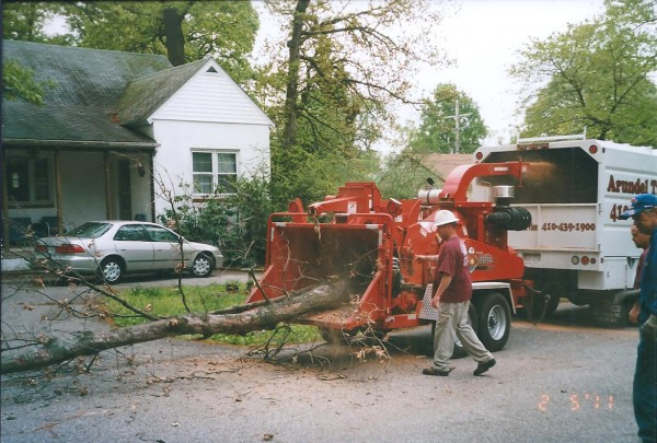 Brush Chipping Arundel Tree Service